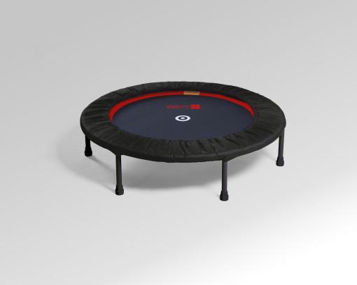 Postanowienia noworoczne z trampoliną fitness GOFIT